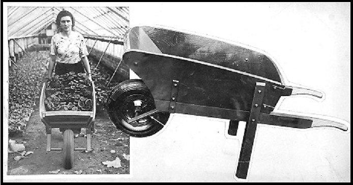 A later Hampton Pattern Wheelbarrow seen in use inside a greenhouse.