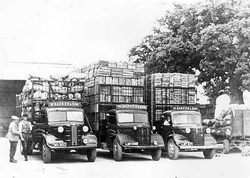 Lorries built by Gibbs, belonging to W. Barker and Son of Laleham on Thames loaded ready for market.  The two families became close friends.